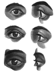 Eye Anatomy Brushes