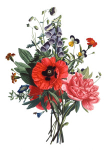 Free Vintage Images - Flower bouquet