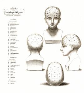 Vintage Phrenology Chart