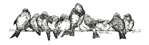 Vintage Bird Clip Art Illustration