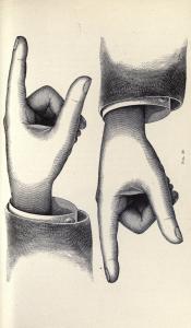 Vintage Hand Clip Art Illustration