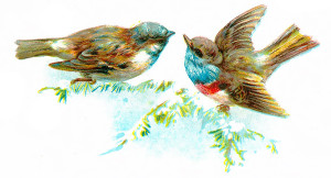 Vintage Bird Clip Art Illustration